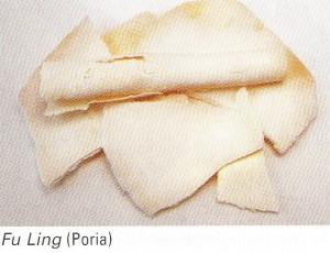 Fu Ling